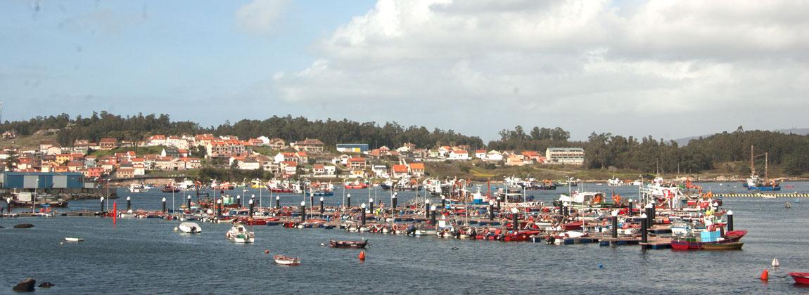 Arousa puertos