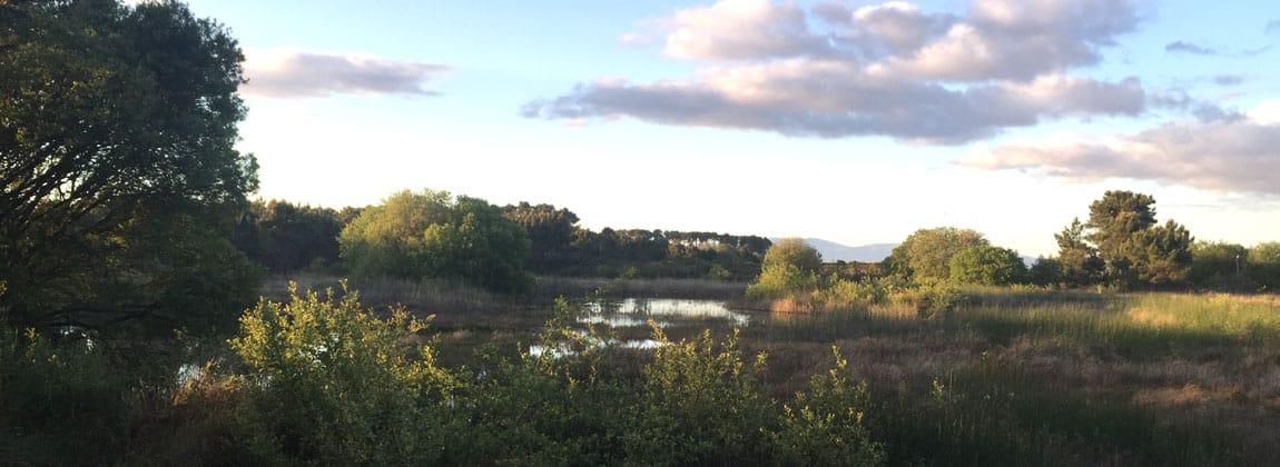 Parque Carrreirón
