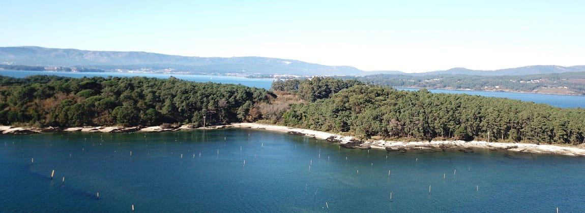 Isla Cortegada Galicia