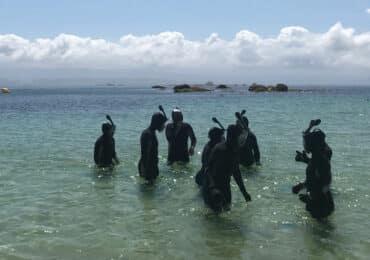 Actividades Illa de Arousa