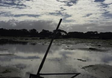 Marisqueo en Galicia