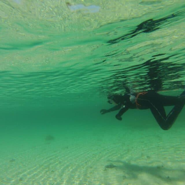 Snorkel Arousa
