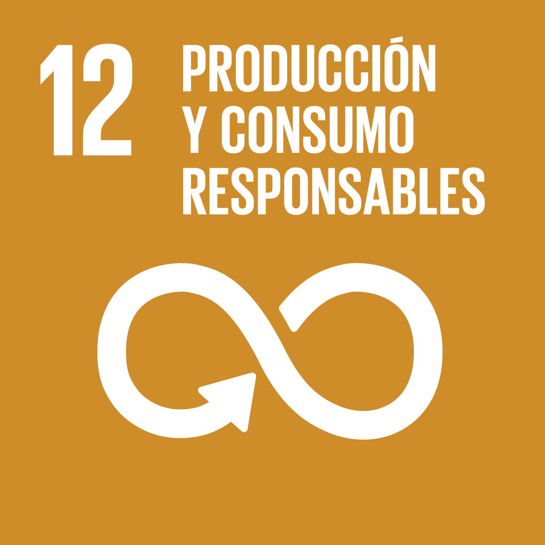 ODS Piragüilla - Producción y Consumo responsable