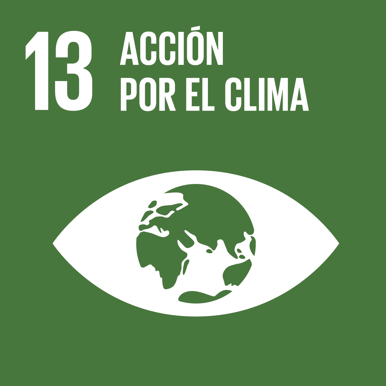 ODS Piragüilla - Acción por el Clima