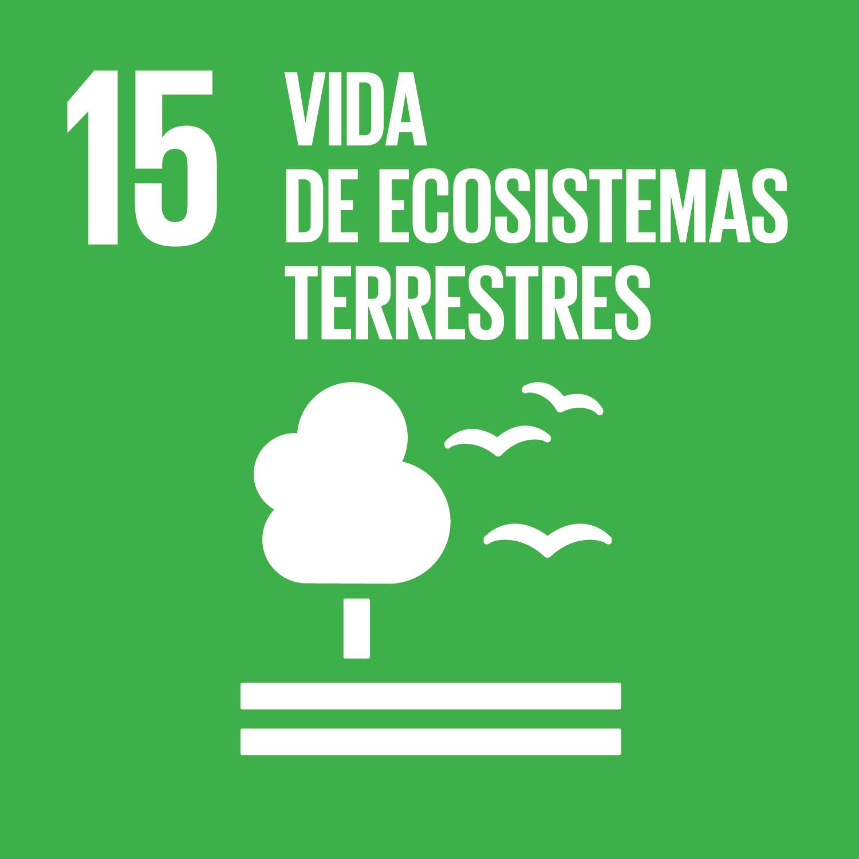 ODS Piragüilla - Vida de Ecosistemas Terrestres