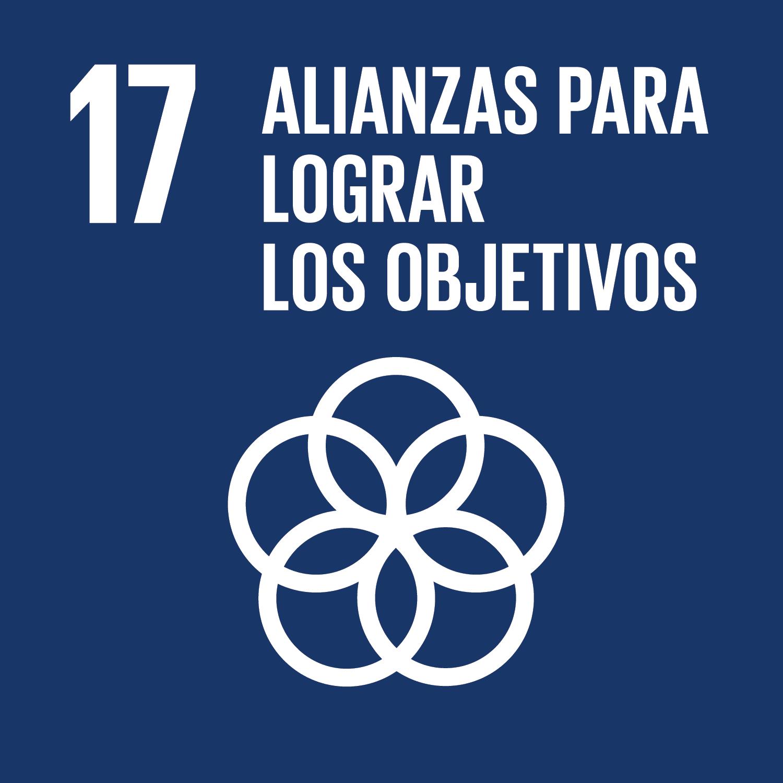 ODS Piragüilla - Alianzas para lograr los objetivos
